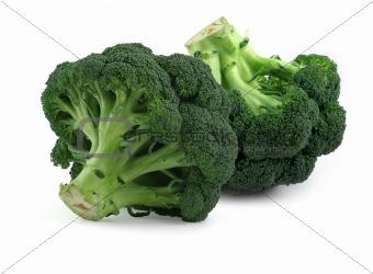 broccoli on white,