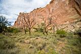 Capitol Reef National Park USA (ED)