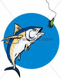 Albacore Tuna taking the bait