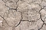 Close up of cracked dried soil with footprint
