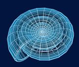 Abstract 3d spiral shell from a blue grid