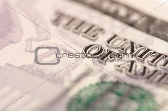 Abstract Five Dollar Bill