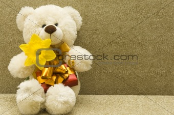 toy bear with gift