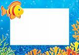 "photo-frame ""Coral fish"""