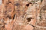 Rock wall Zion NP Utah USA (BN)