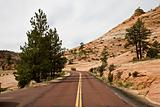 Road in Bryce Canyon Utah USA (BV)