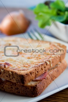 Grilled french sandwich with salad