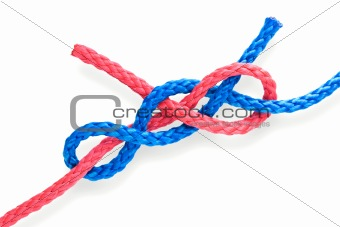 Fisher's knot 08