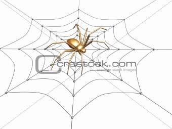 3d spider from the gold, sitting on a web