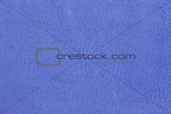 Azure Leather