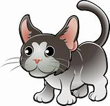 Cute Domestic Cat Vector Illustration