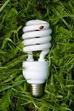 energy saving light bulb on grass with an environmental theme