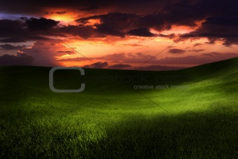 Beautiful sunset on a green meadow