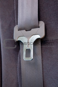 Seatbelt in Car
