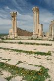 Roman columns in ancient city Volubilis
