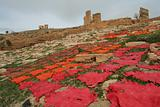 Leather on ruins of ancient Fez