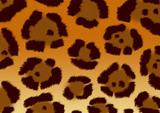 Texture for a background - a fluffy skin of a jaguar
