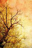 Vintage tree