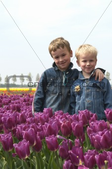Boys Between Tulips