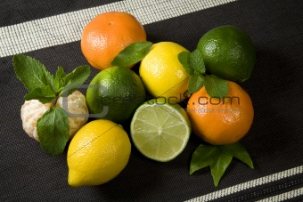 Citrus Fruit Background
