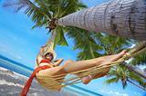 palms and lounge