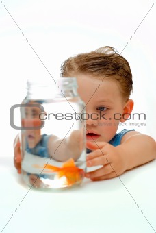 Young toddler boy with goldfish
