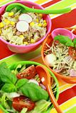 Different salads in buffet - healthy food