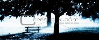 Misty Morning with park bench