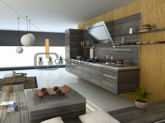 the modern kitchen