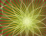 Spyroflower
