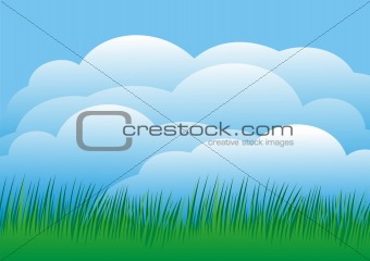 Sky with grass