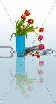 Bouquet of tulips in a vase11
