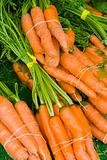 carrots with tops