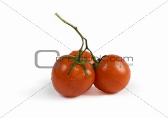 Three red tomatoes with shadow