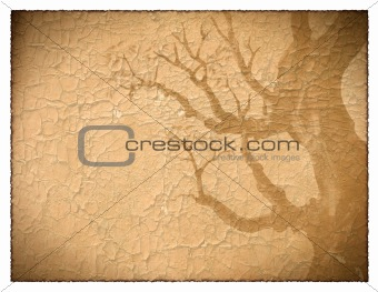 background image with interesting texture.