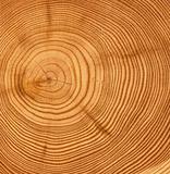 wooden cut texture