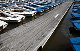 Sailing boats 16