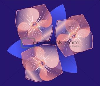 Beaty Flowers