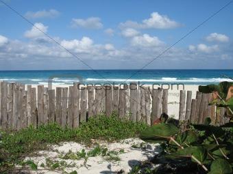 wild beach view