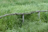 Old fence in the grass.