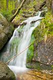 Stream in the Green