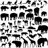 Lots of Animal vector silhouettes