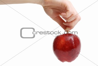 Woman's hand holding red apple