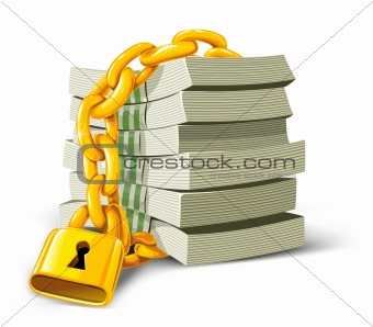 vector money with gold lock isolated