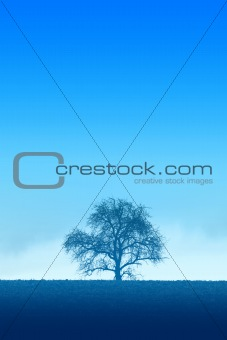 Blue Lonely Tree