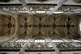 Abstract picture of ceiling in french church