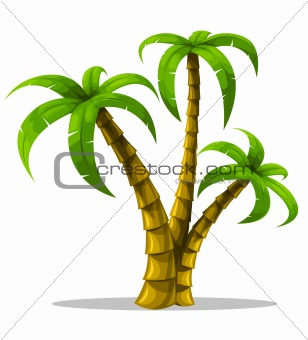 vector tropical palm trees isolated on white