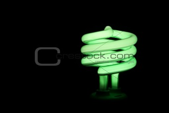 Green Fluorescent Light