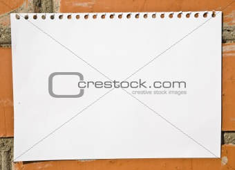 Blank Notepad Sheet On The Wall