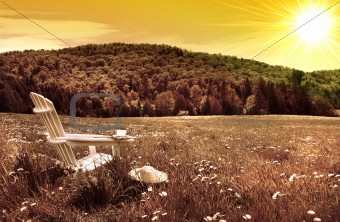 White adirondack chair in a field of tall grass